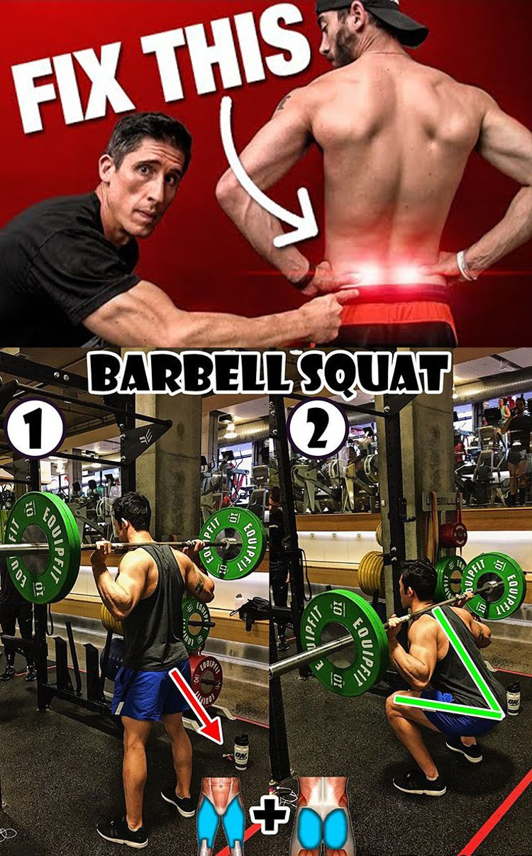 BARBELL SQUAT GUIDE