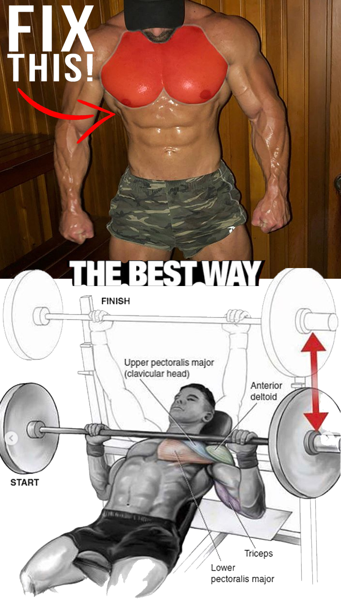 Incline Barbell Bench Chest Press