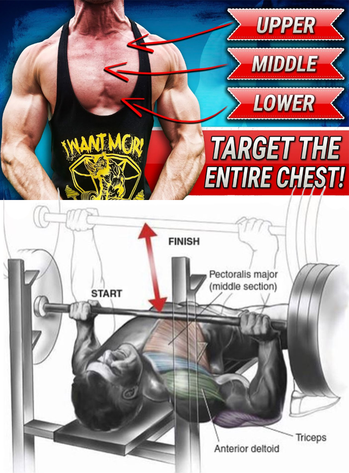 Smith Machine Bench Chest Press