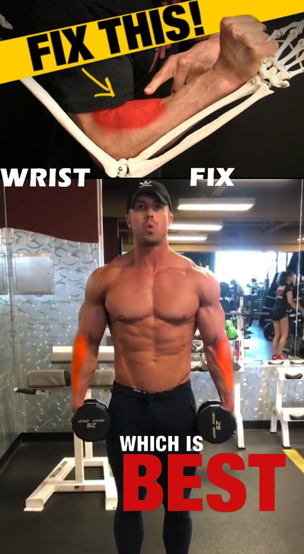 Standing Dumbbell Neutral Grip Forearm Curls