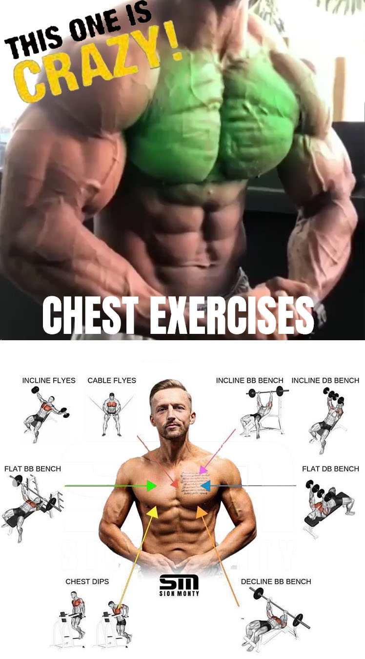 Effective Chest Exercises
