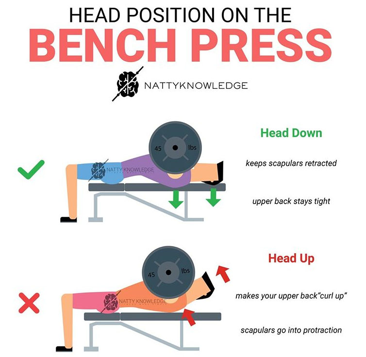 HEAD POSITION ON THE BENCH PRESS