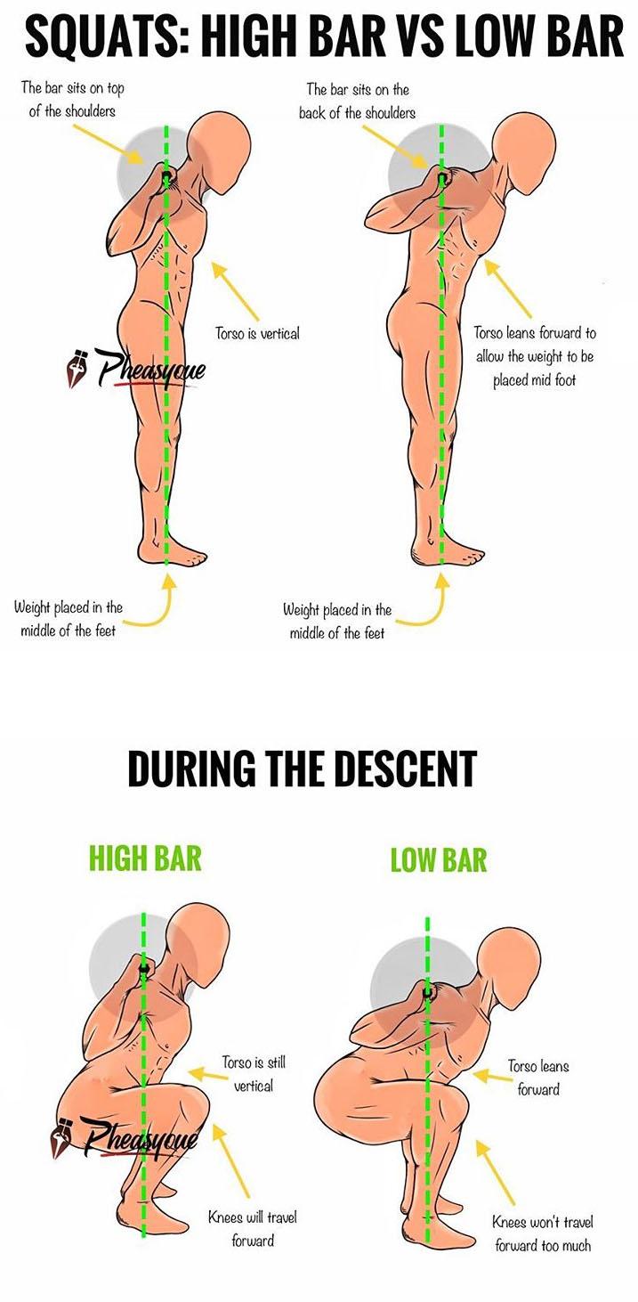 HIGH BAR VS LOW BAR SQUATS - weighteasyloss.com - Fitness ...