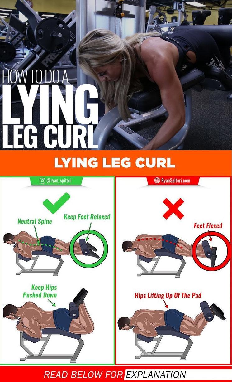 LYING LEG CURL