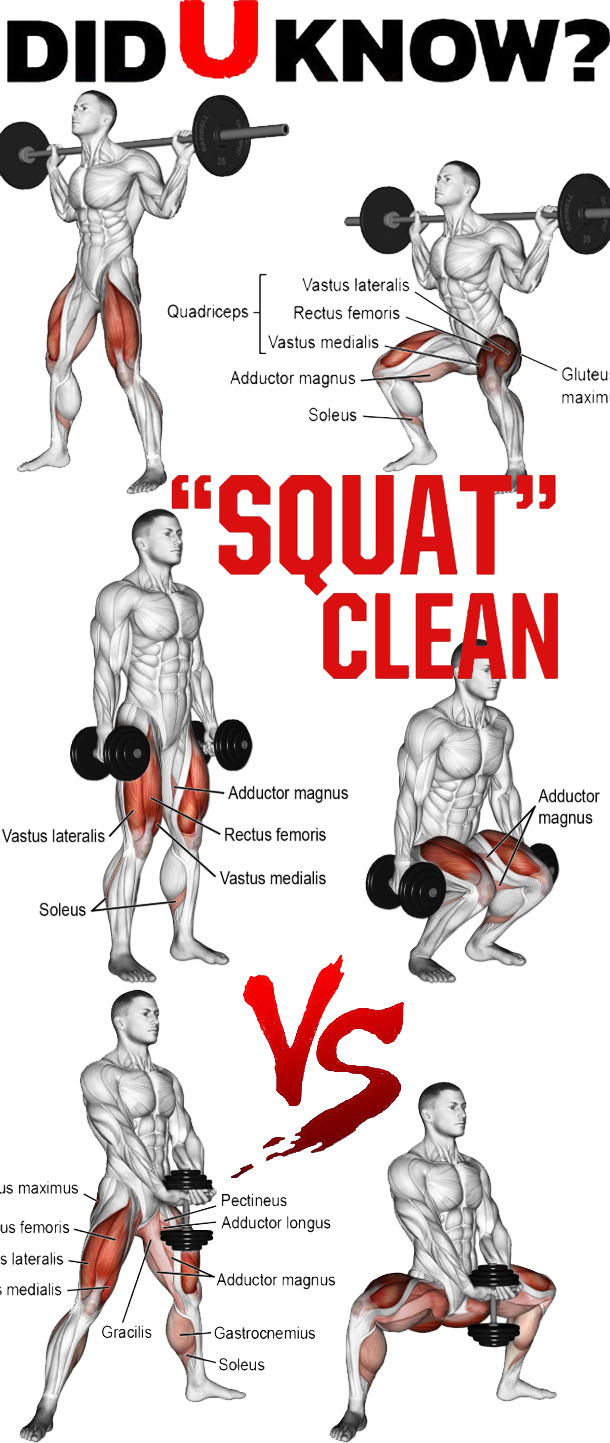 SQUATS CLEAN VARIATION