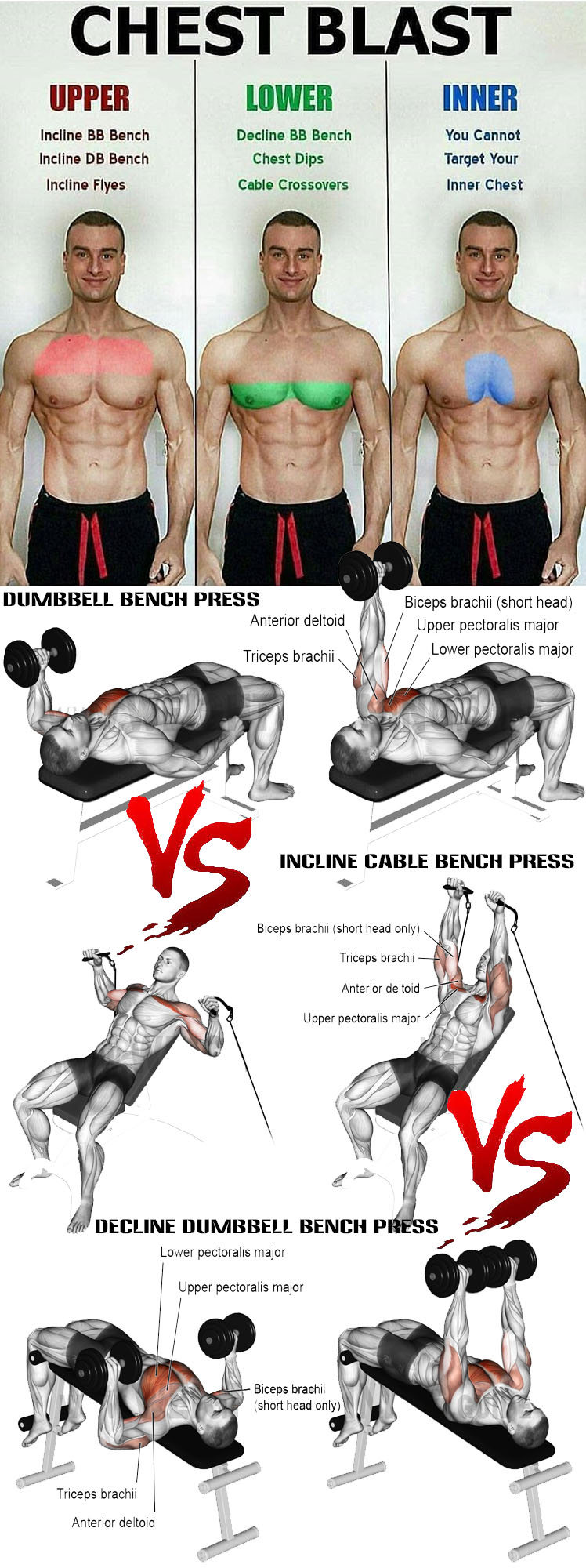 HOW TO CHEST BLAST GUIDE