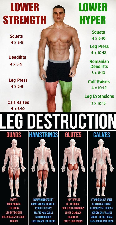 LEG DESTRUCTION