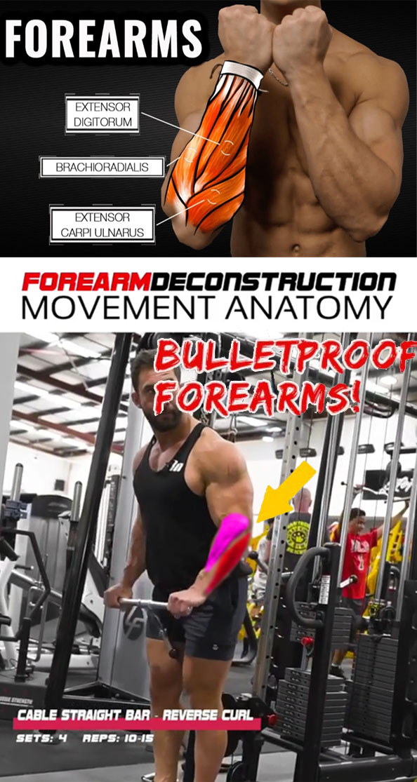 FOREARMS & CABLE STRAIGHT BAR