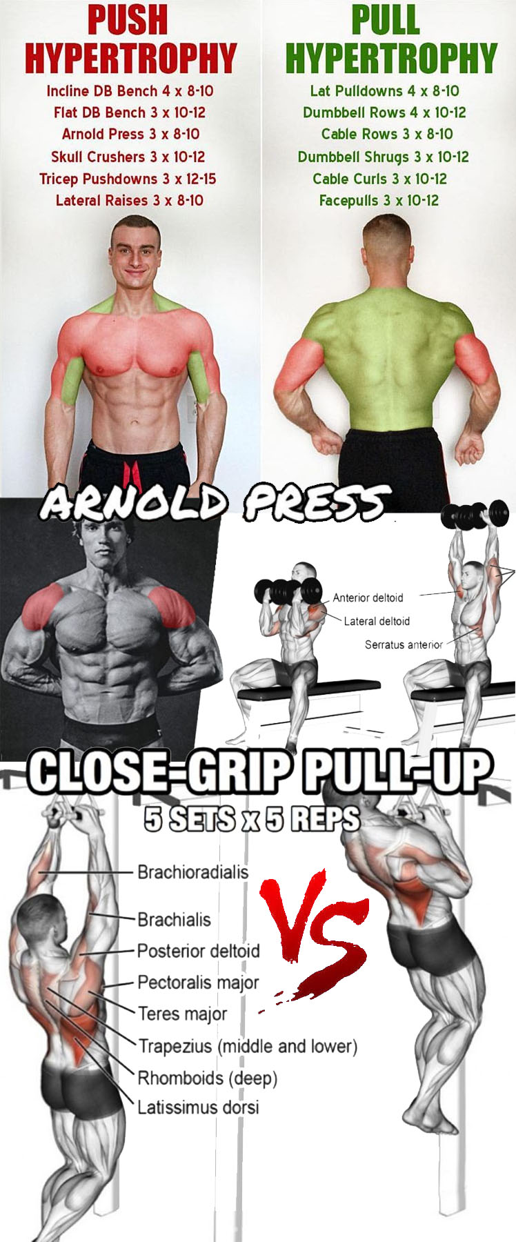 PUSH/PULL HYPERTROPHY