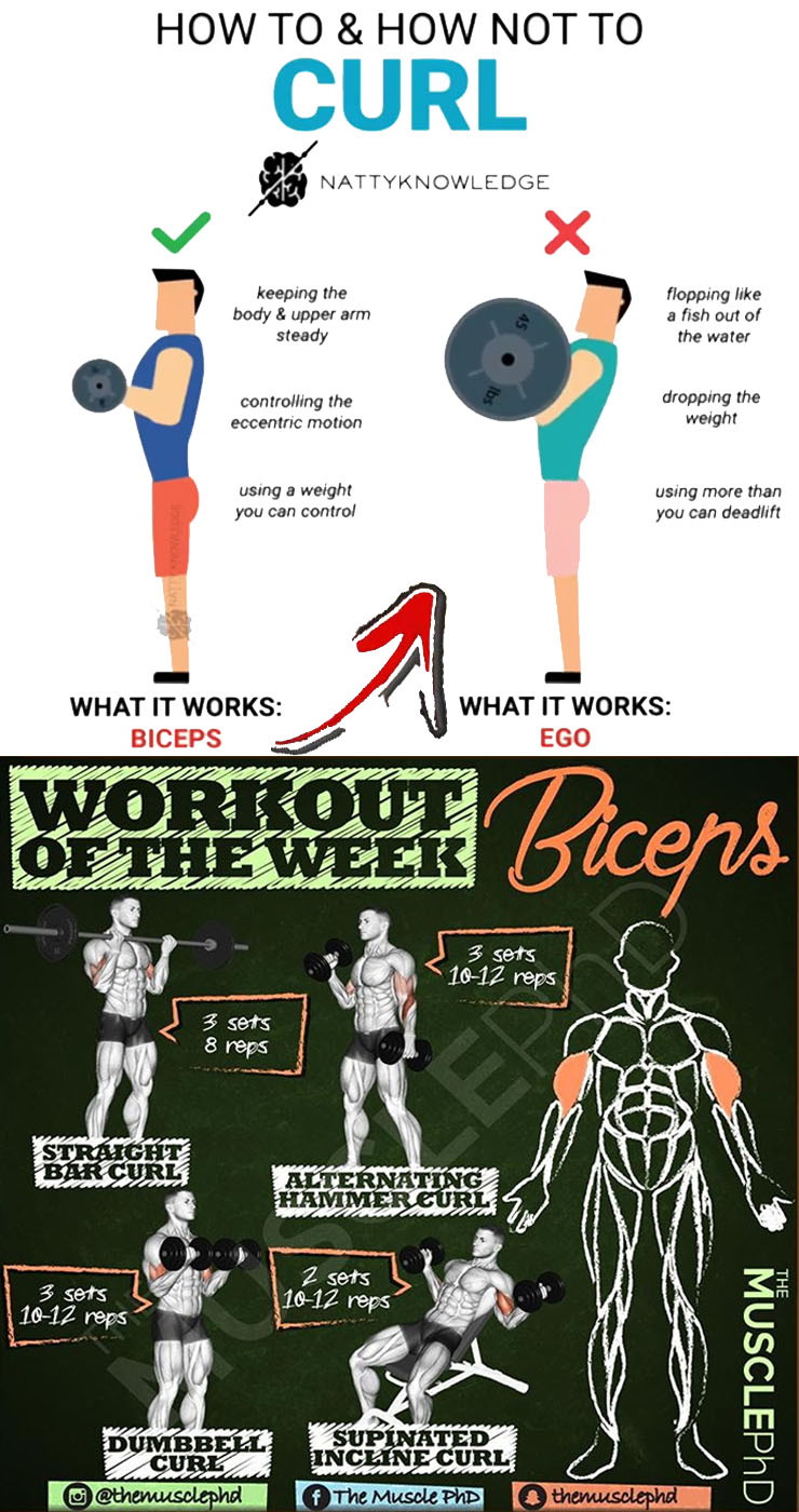 Workout of the Week & Biceps