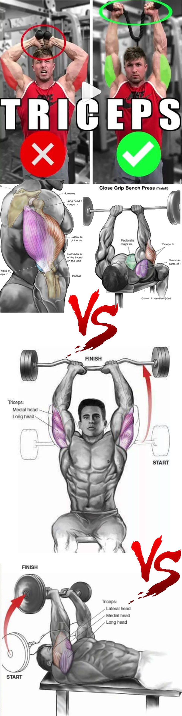 TRICEPS COMPLEX WORKOUT
