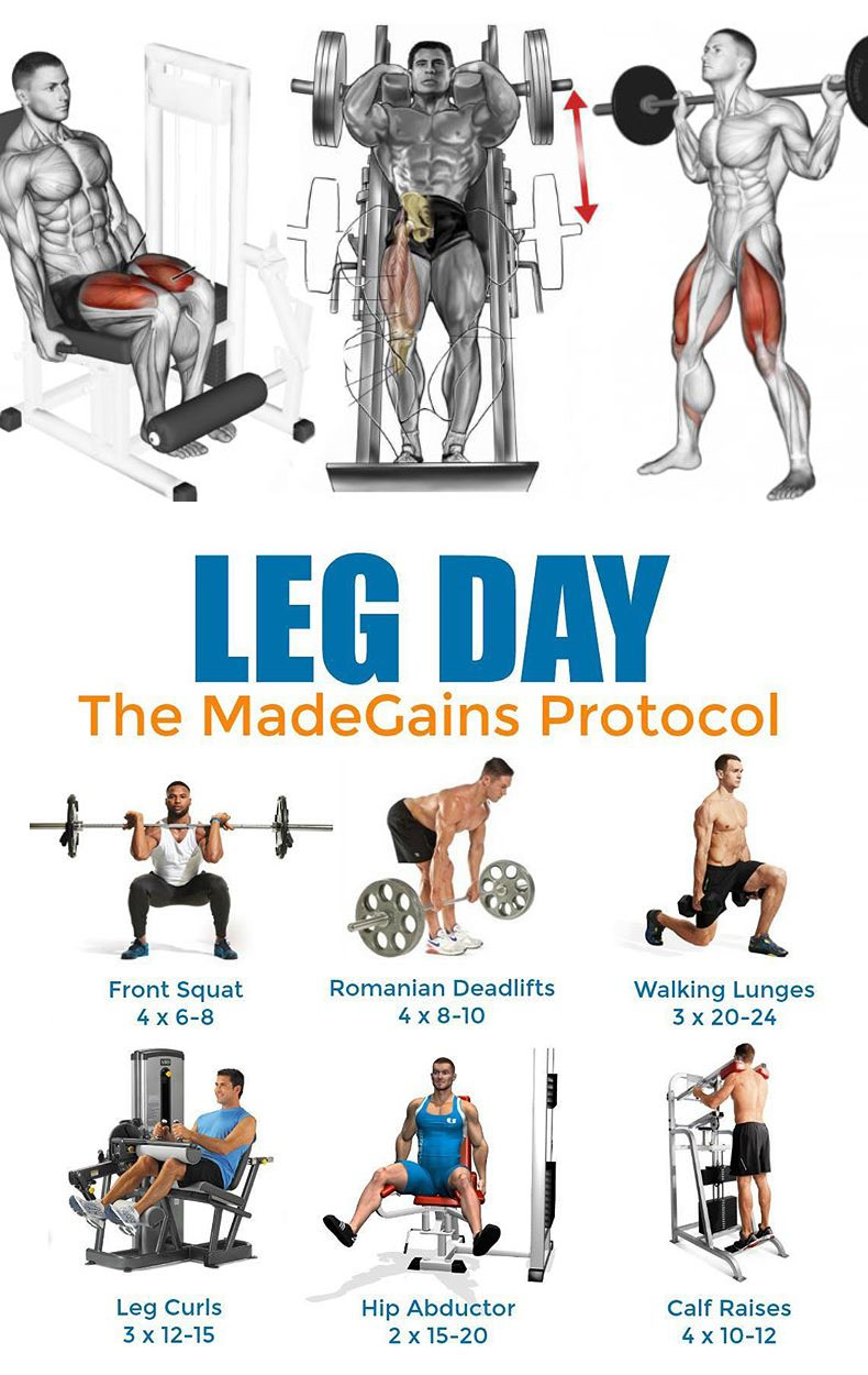 LEG DAY EXERCISES