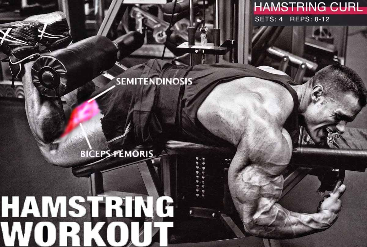 How to Do Hamstring curl