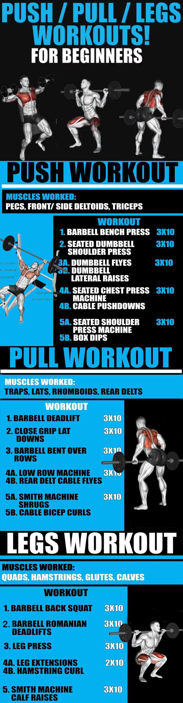 Push/ Pull/ Legs Split