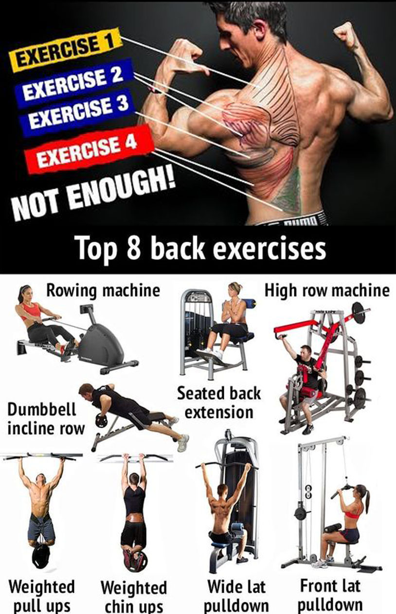 TOP 8 BACK EXERCISES