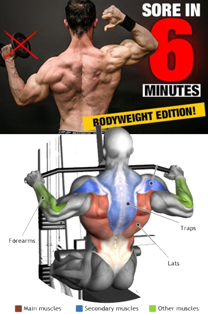 Lat Pulldown Exercise Guide & Tips
