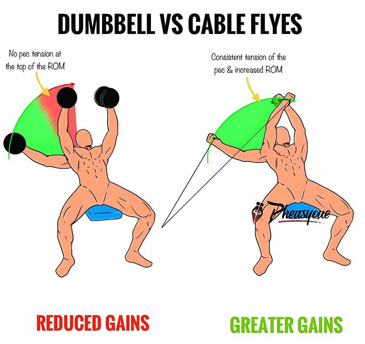 DUMBBELL VS CABLE FLYES