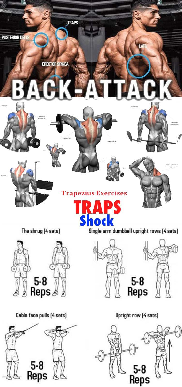 Traps Extension Exercises