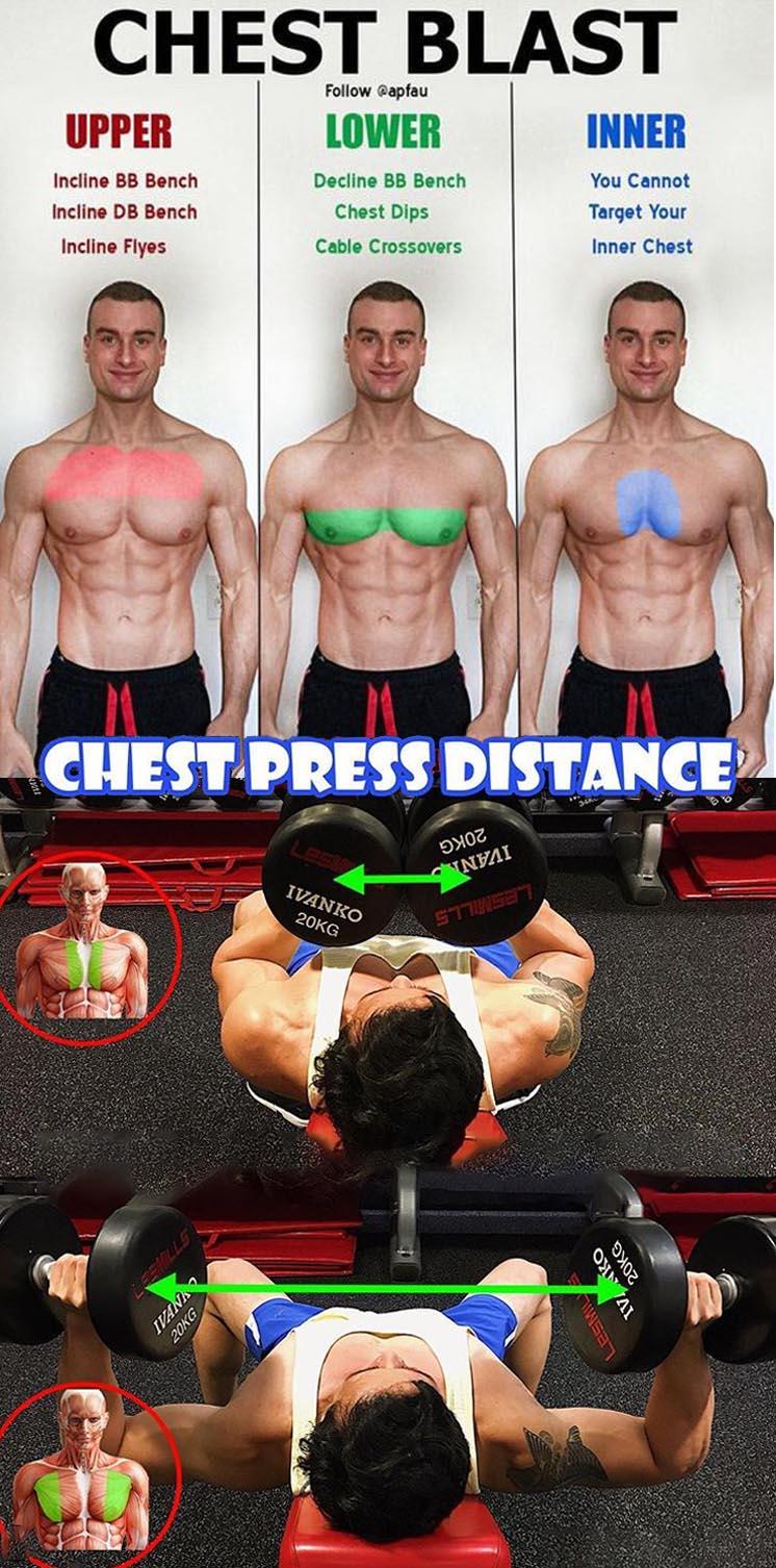 Chest Press Distance