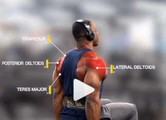 Strict Seated Lateral Raises
