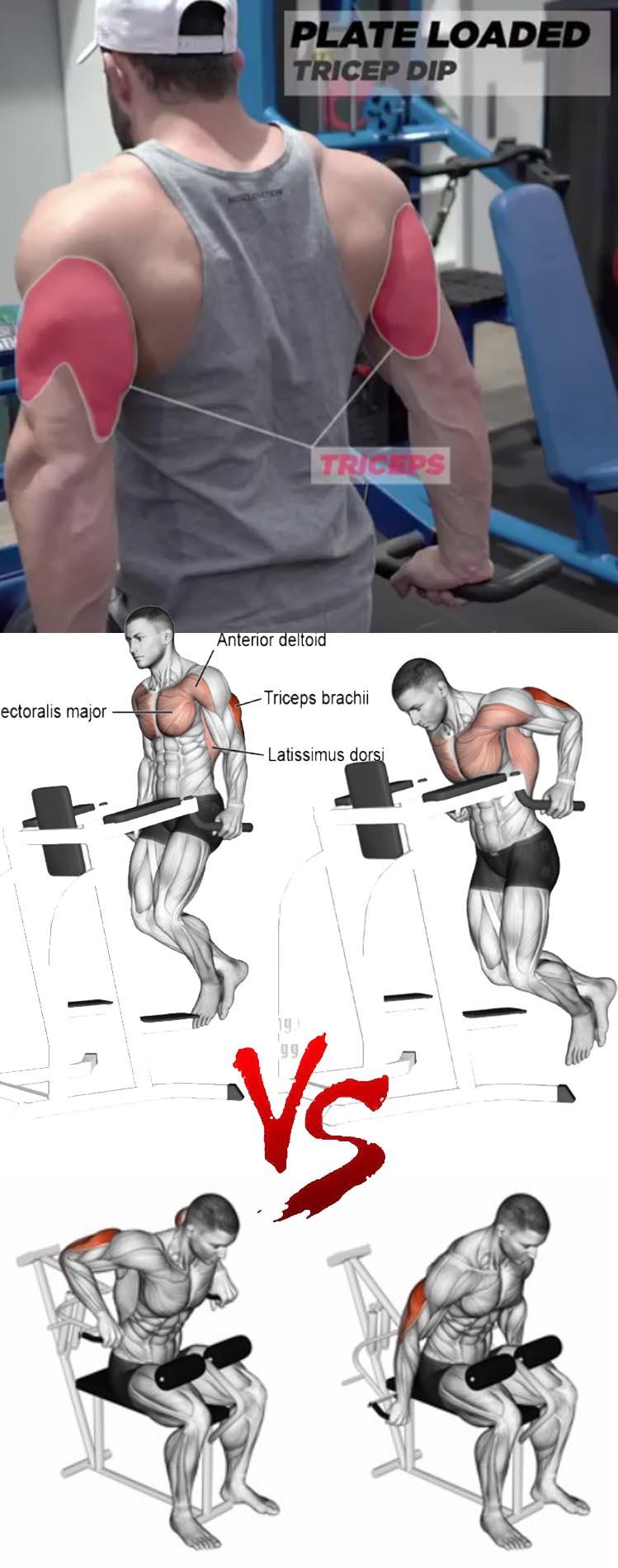 TRICEPS DIPS MACHINE VS Triceps Parallel Bar Dips