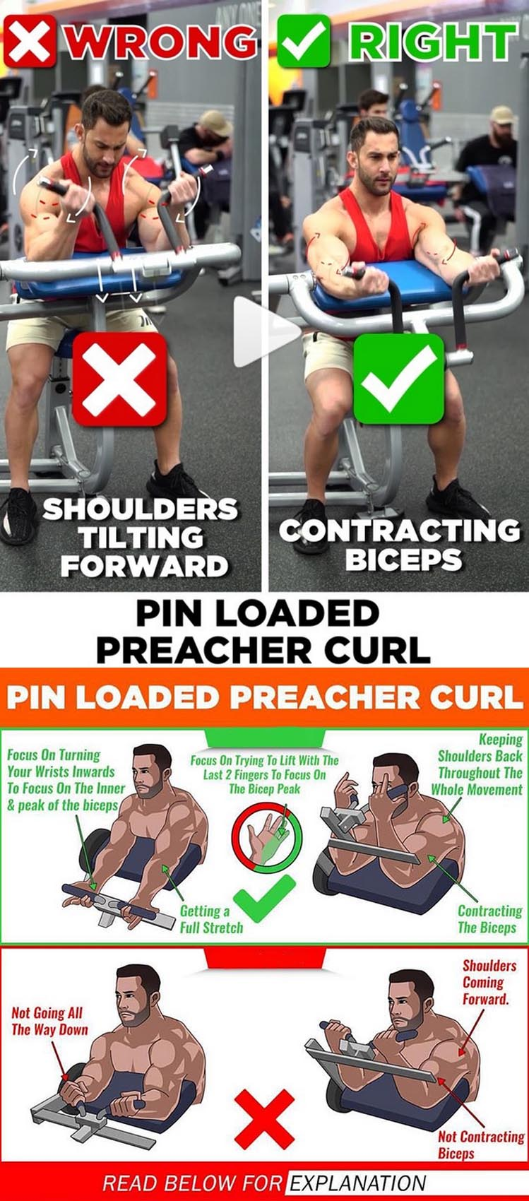 PIN LOADED PREACHER CURL