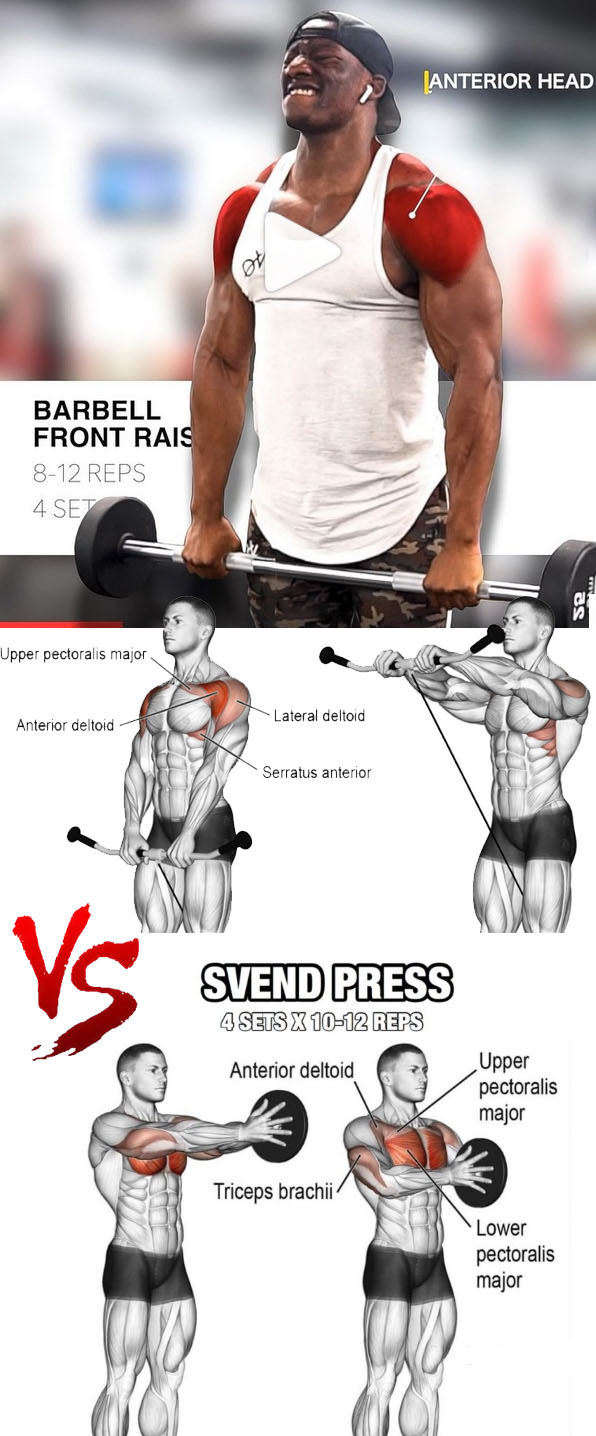 Barbell/Cable/Dumbbell Front Raise