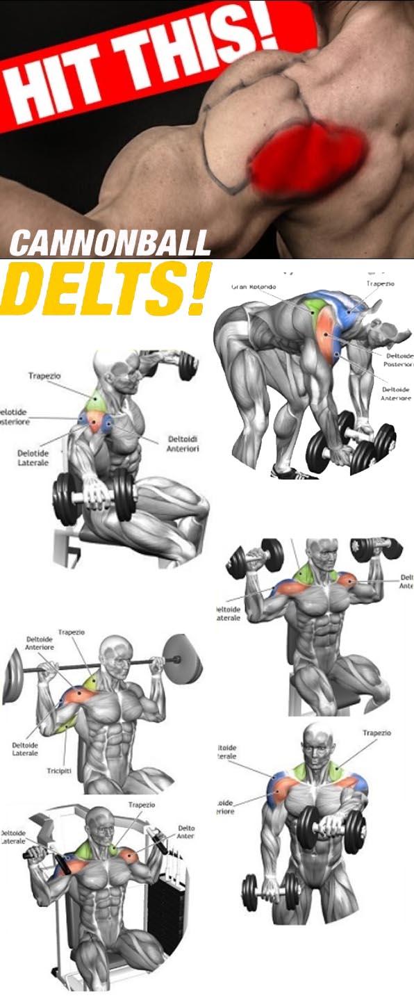 Delts workout