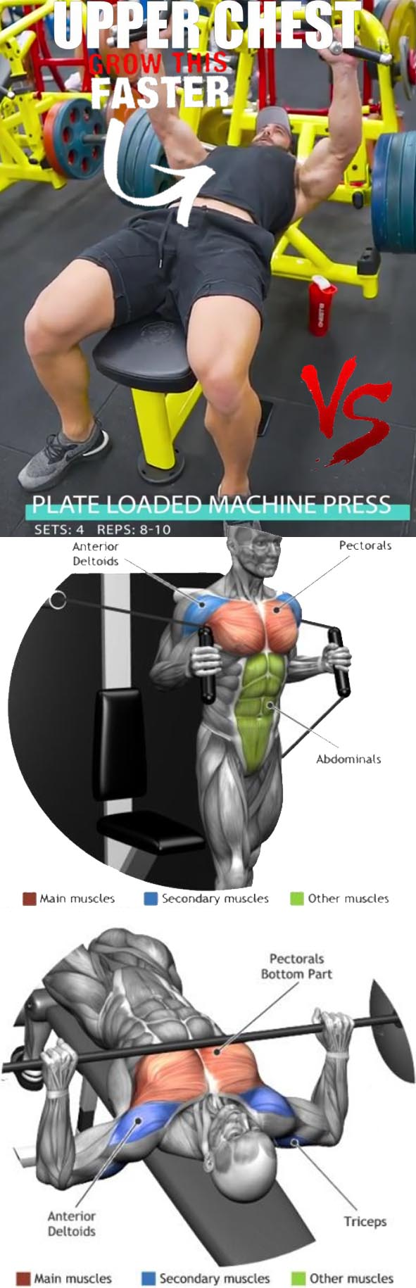 How to Do a Seated Chest Press