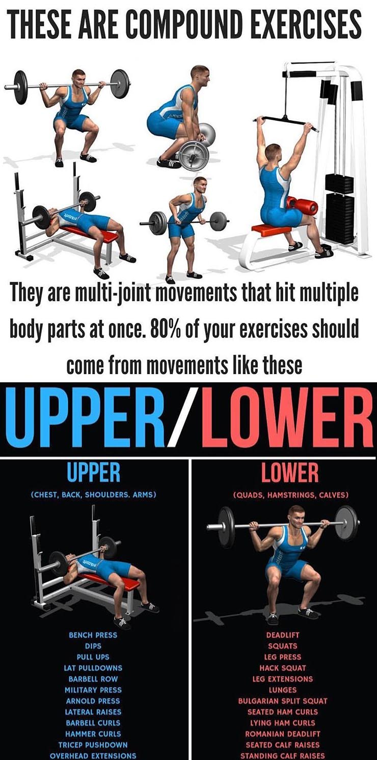 UPPER/LOWER WORKOUT