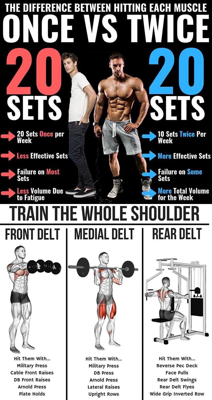 Train the Whole Body Muscle