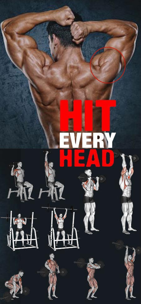 Shoulder Workout 3 Head
