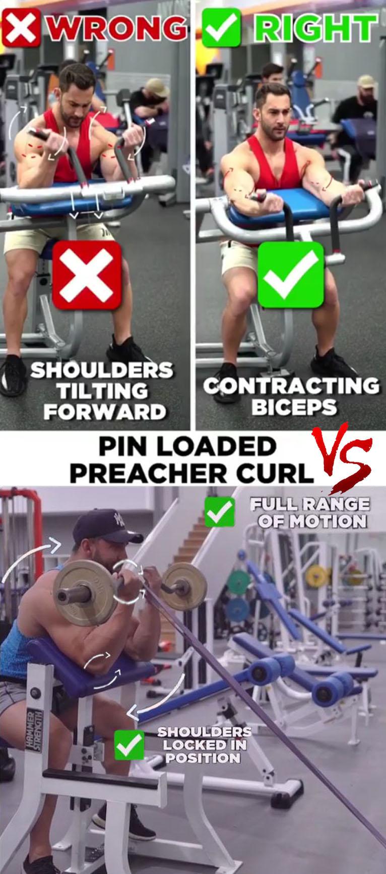 Pin Loaded Preacher Curl