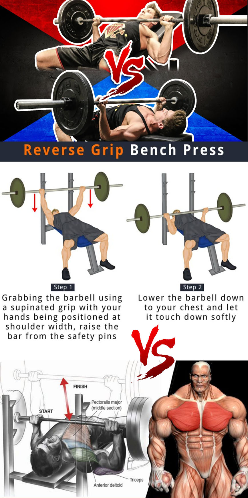 Reverse Grip Bench Press VS Bench Press