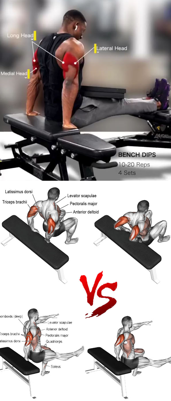 Bench Tricep Dips
