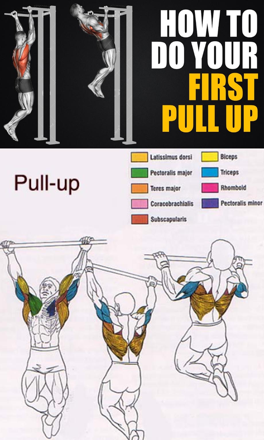 How to Pull-Up