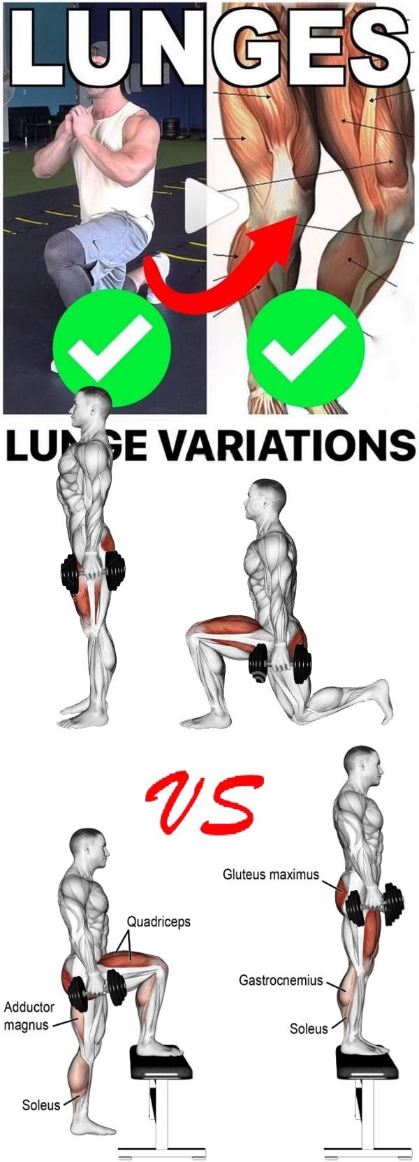 How to Lunges exercises