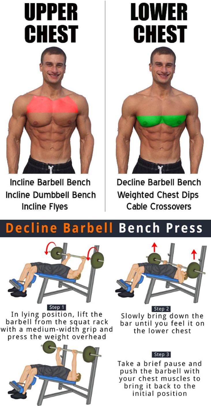 Decline Bench Press Benefits
