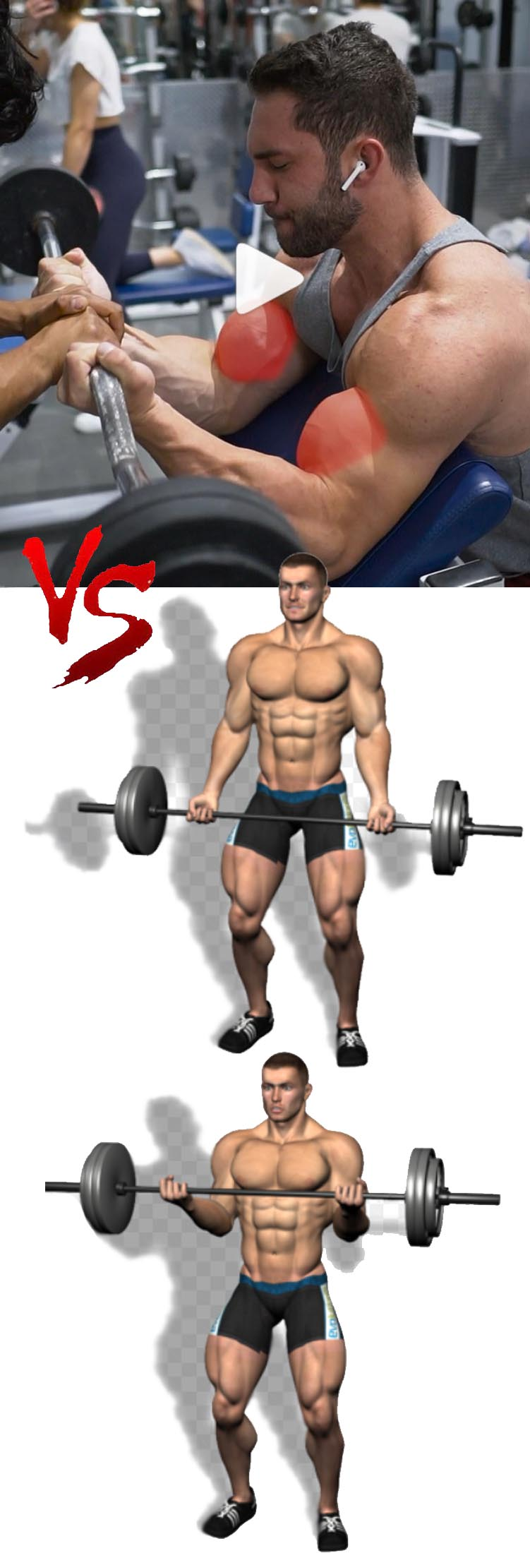 Biceps Curl Workout