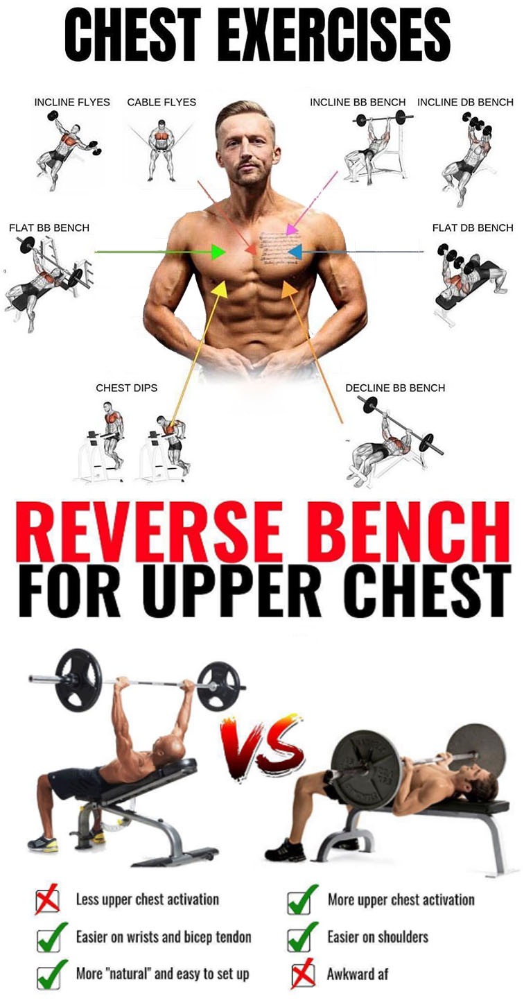 HOW TO REVERSE BENCH EXERCISES
