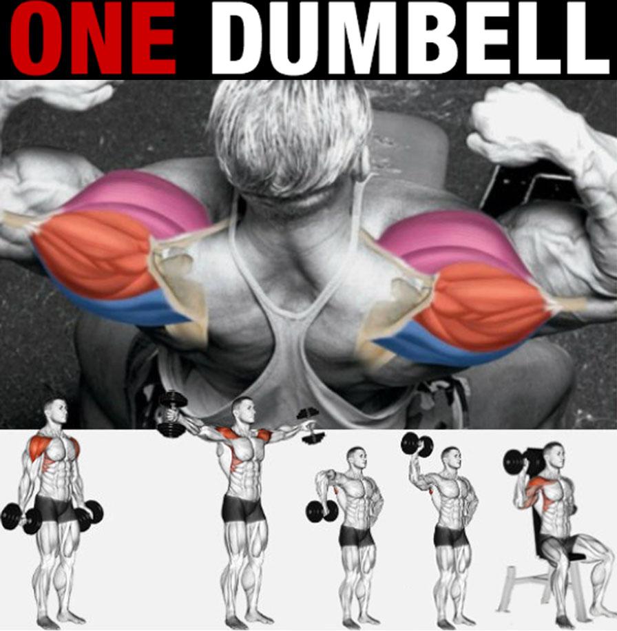 One Dumbbell Exercises
