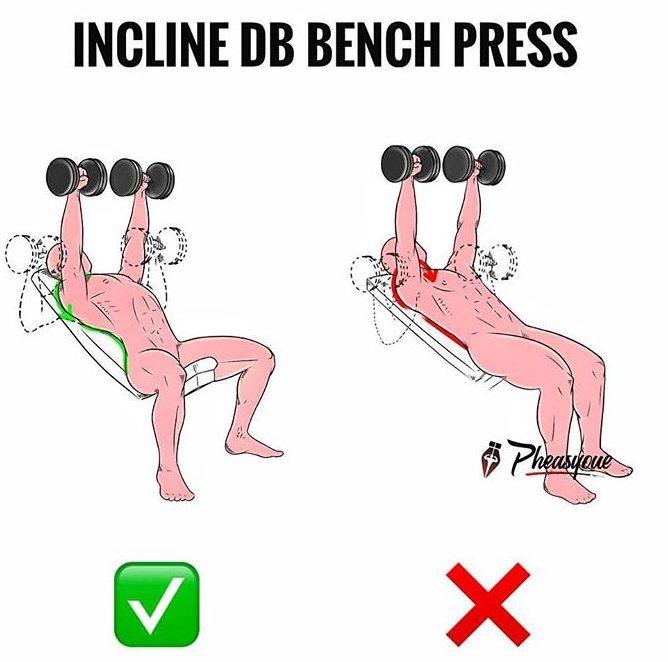 INCLINE DB BENCH PRESS