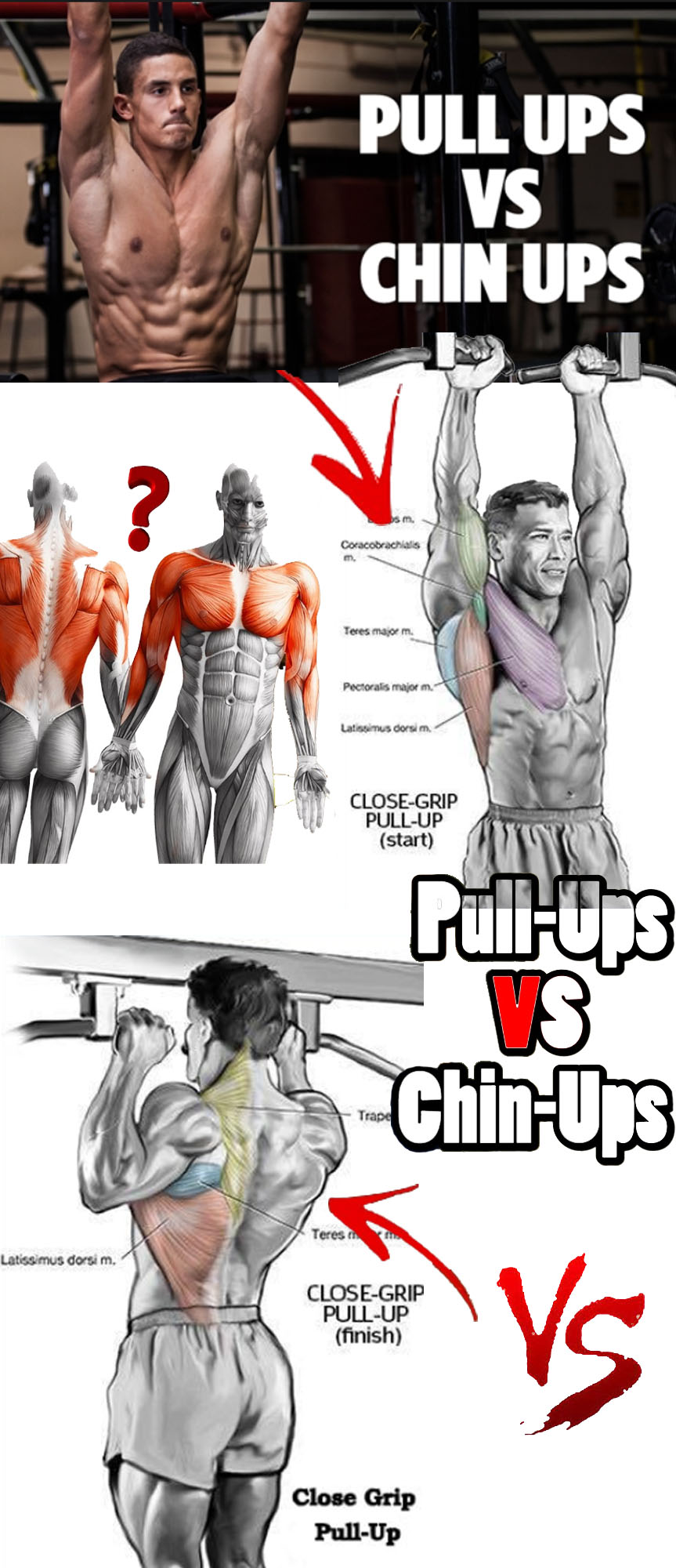 How to Pull ups vs Chin ups