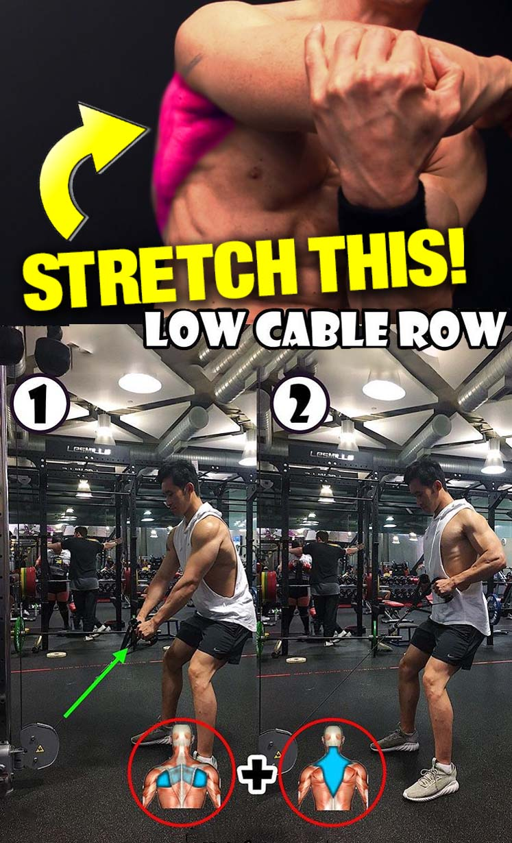 The Low Cable Row