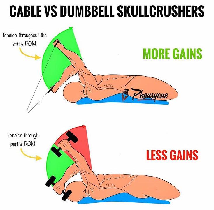 CABLE VS DB SKULLCRUSHERS