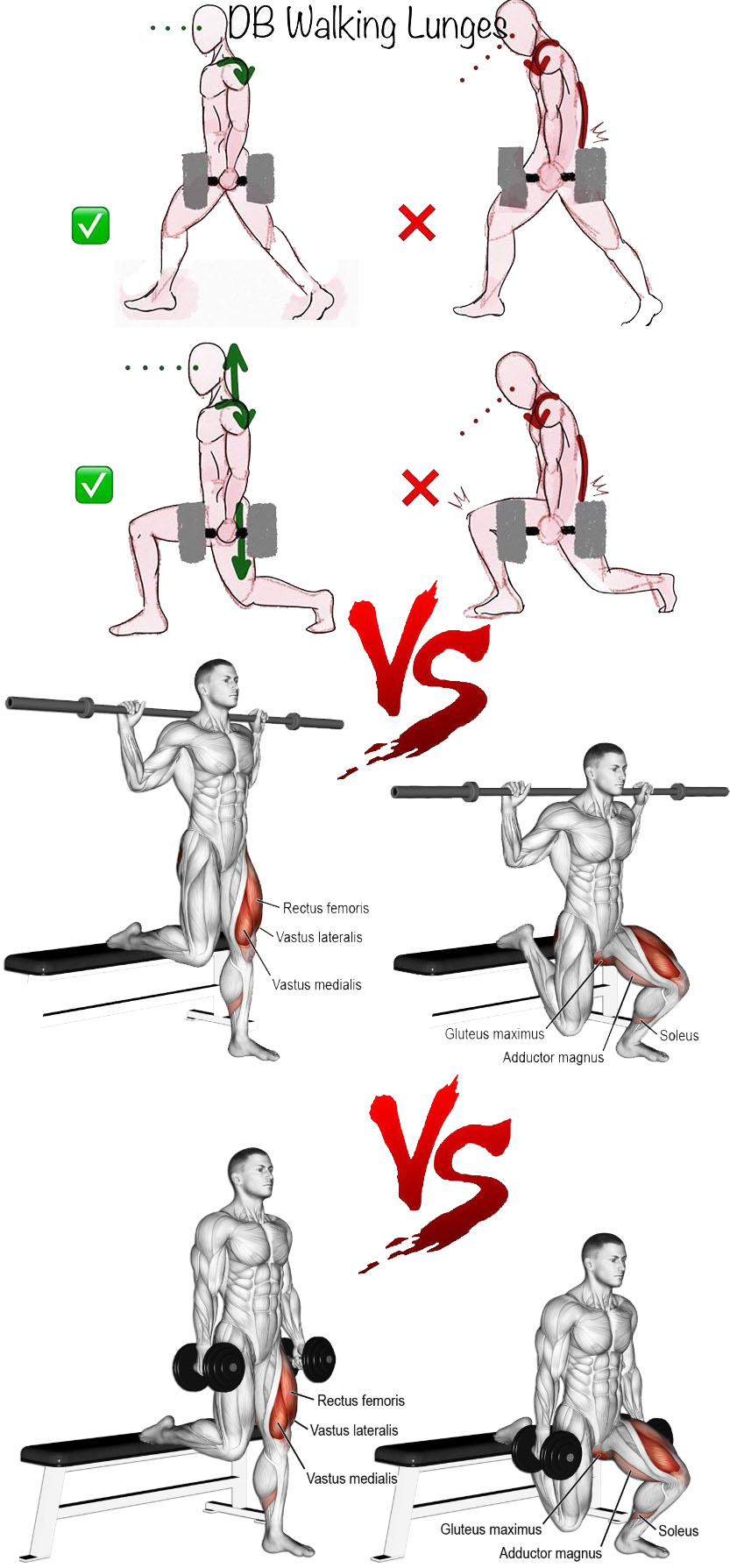 Lunges VS Bulgarian Split