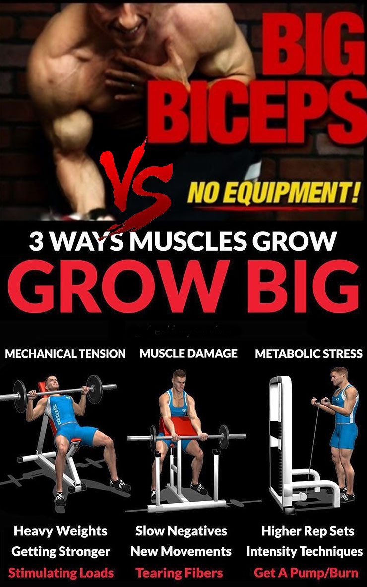 GROW BIG MUSCLE