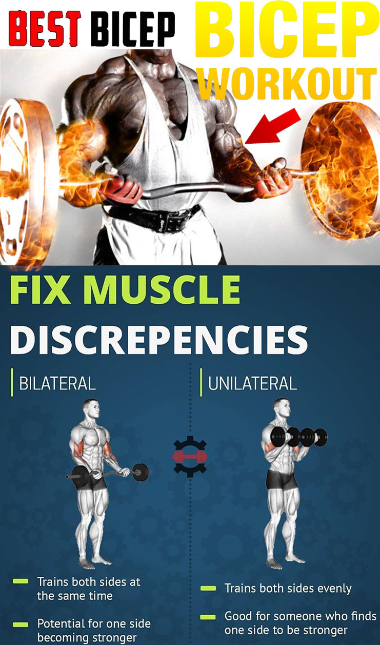 Fix Muscle Biceps Workout