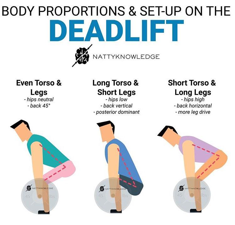 Set-Up Deadlift