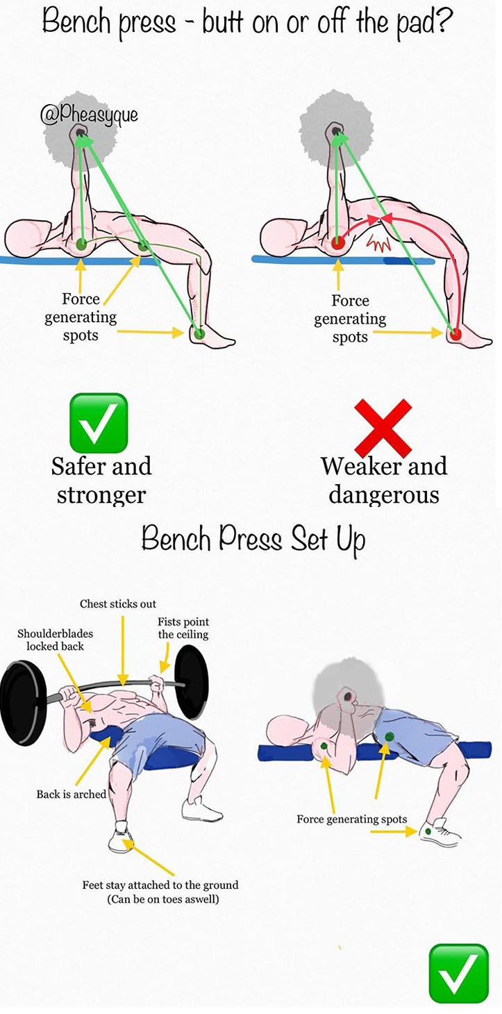 Bench Press Set Up
